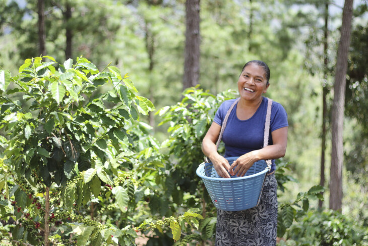 Coffee producers Carmelina Carranza Díaz and Luis Ramón Mejía Díaz use ASA practices to grow the coffee on their farms in Zacapa, Guatemala. Water-Smart Agriculture - Agua y Suelo para la Agricultura (ASA) – is the proven practice of managing soil to manage water and increase yields. Farmers across Central America and Mexico are maximizing the potential of their land and rainfall using ASA's practical and effective farm management practices.