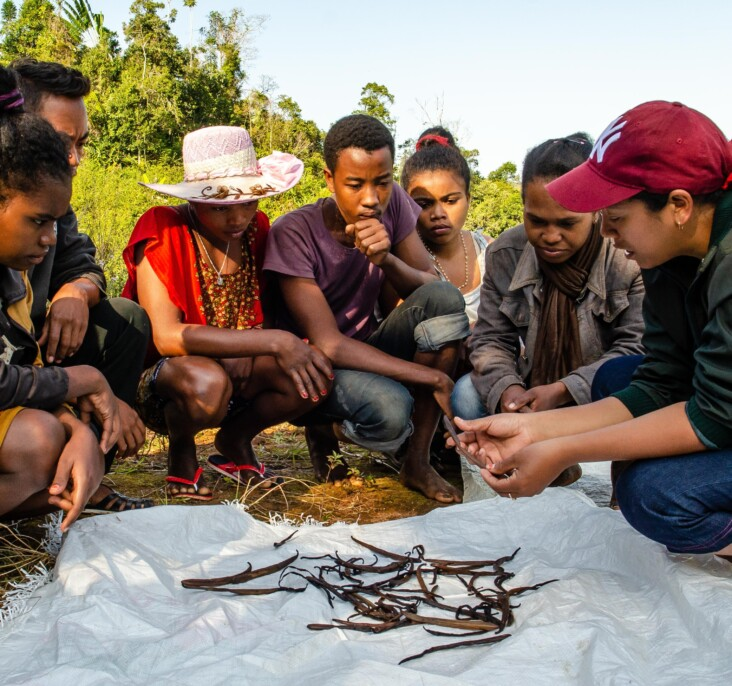 Félicité works with a group of local youth, explaining the careful and intensive process of growing high quality vanilla. Photo by Heidi Yanulis for CRS.