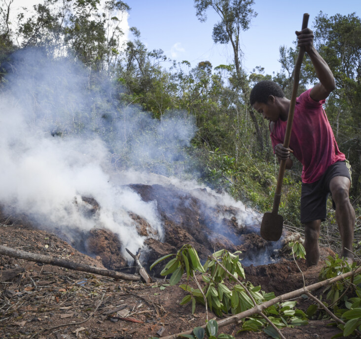 A young man digs and throws dirt on a pile of burning wood. This process is used to create charcoal, a high-demand source of heat for cooking in rural parts of Madagascar. Areas surrounding Ranomafana National Park are suffering massive deforestation to create charcoal. Photo by Mark Metzger/CRS.