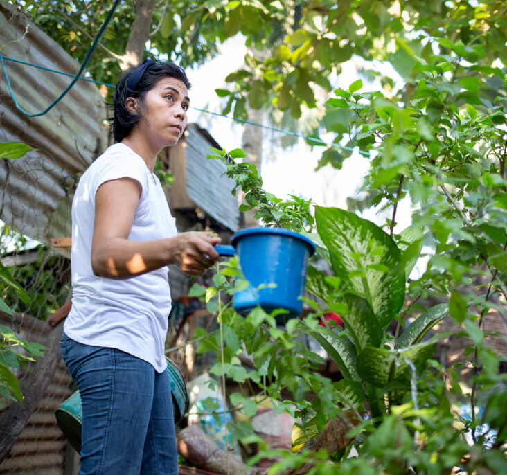 """""""My plants bring me happiness and help me deal with stress,"""" Girli says. Photo by Jennifer Hardy/CRS."""